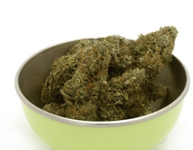 What Is The Most Potent Strain Of Cannabis